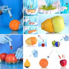 Genetic engineering laboratory. GMO food concept