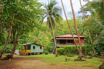 Caribbean house and hut with tropical vegetation