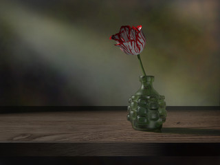 Tulip still life