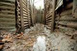 WW1 Trenches, Sanctuary Wood, Ypres, Belgium