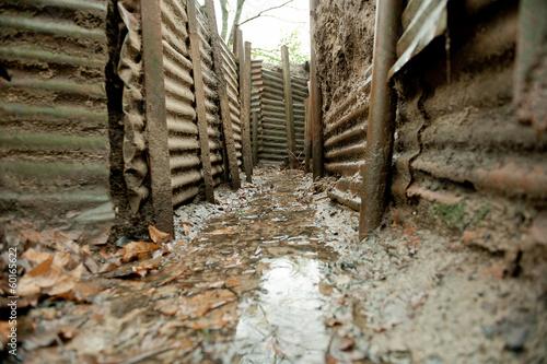 WW1 Trenches, Sanctuary Wood, Ypres, Belgium - 60165622