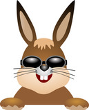 easter bunny with sunglasses