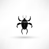 vector illustration of bug