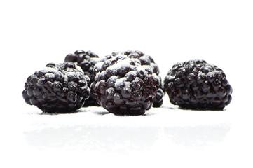 Blackberries with icing sugar