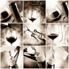 degustazione vino - wine tasting