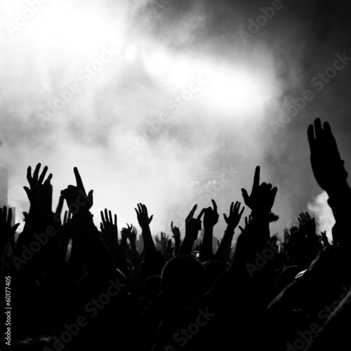 Group of people enjoying a concert
