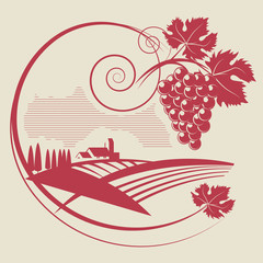 The grape and wineyard silhouette, vector illustration