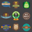Business badge set, vector format