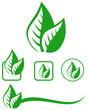 Leaves emblem set