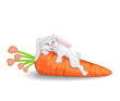 funny rabbit with carrot and hearts