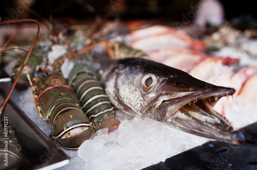 Fresh fish barracuda in ice on the market