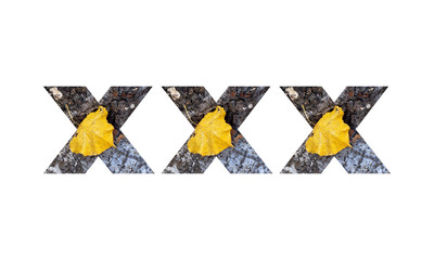 Symbols XXX from a bark of a tree with a yellow leaf on a white