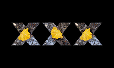 Symbols XXX from a bark of a tree with a yellow leaf on a black