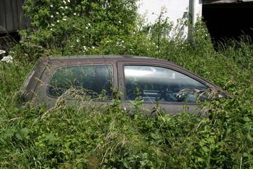 Altes Auto im hohen Gras