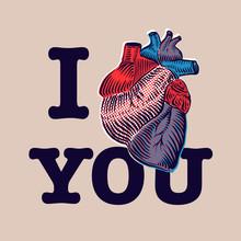 Saint Valentin. Vecteur eps10 avec le coeur humain.