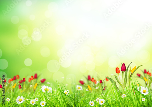 Abstract floral background - 60198066