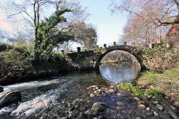 Puente sobre el Ambroz, Hervás, Cáceres, España