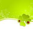 Klee Käfer grüner Hintergrund