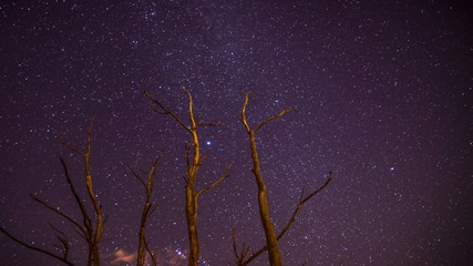 Night sky of stars time-lapse
