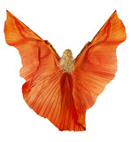 Woman in belly dance fabric dress as wings. Back side view