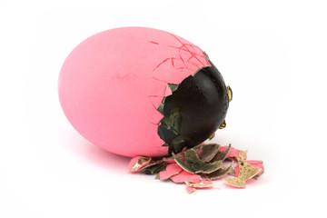 Hundertjähriges Ei