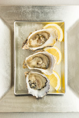 Oysters with lemon on a silver dish