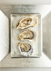 Oysters on a silver dish