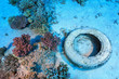 Leinwanddruck Bild - Marine pollution in the tropical reef of the red sea