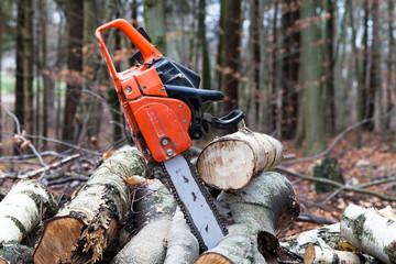 Kettensäge zum zersägen für Holz