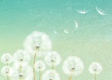 Résumé de fond avec la fleur de pissenlit