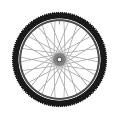 Isolated Bicycle Wheel