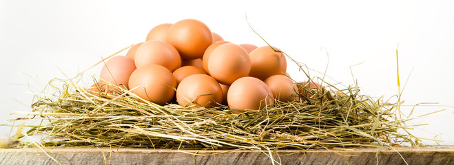 Easter eggs in nest on rustic wooden planks. White background