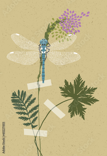 Blue Dragonfly and Plants
