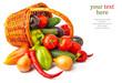 Autumn vegetables in basket