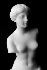The Venus de Milo is a marble statue of the Hellenistic era.