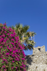 walled city of Rhodes