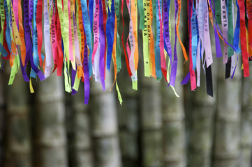 Colorful Brazilian Carnival Wish Ribbons Bamboo Forest