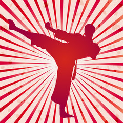 Vector cover karate