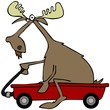 Moose in a red wagon