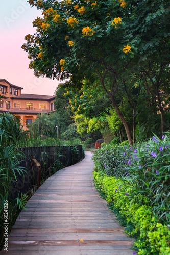 Wooden footpath at dusk