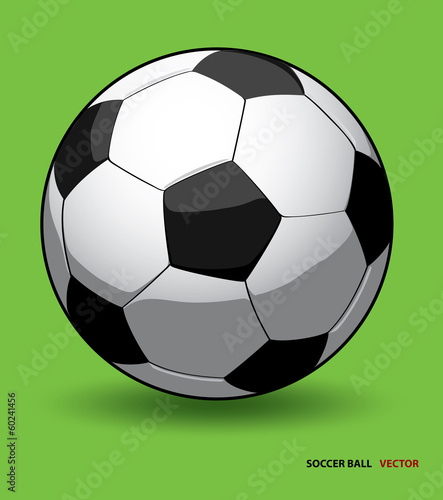 soccer ball vector on green background