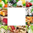 canvas print picture - Gemüse und Kräuter - Vegetables
