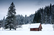 canvas print picture - wooden house in forest at winter time
