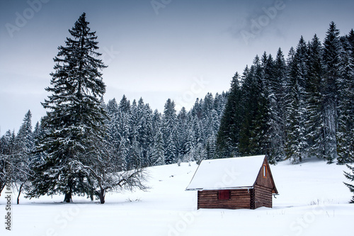 canvas print picture wooden house in forest at winter time