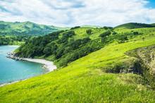 paysage avec des collines, des montagnes, des arbres, de l'herbe sur la plage.