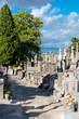 Carcassone Graveyard walking paths