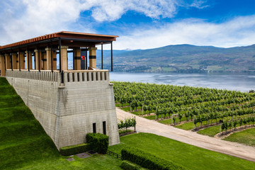 Winery Terrace Overlooking Lake Okanagan, British Columbia