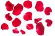 Obrazy na płótnie, fototapety, zdjęcia, fotoobrazy drukowane : red rose petals