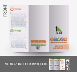 Web Service Tri-Fold Brochure Design.