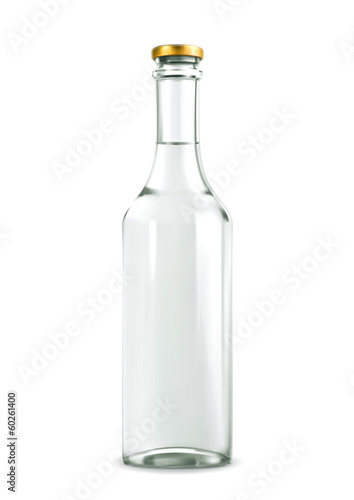 Alcohol drink in bottle vector illustration